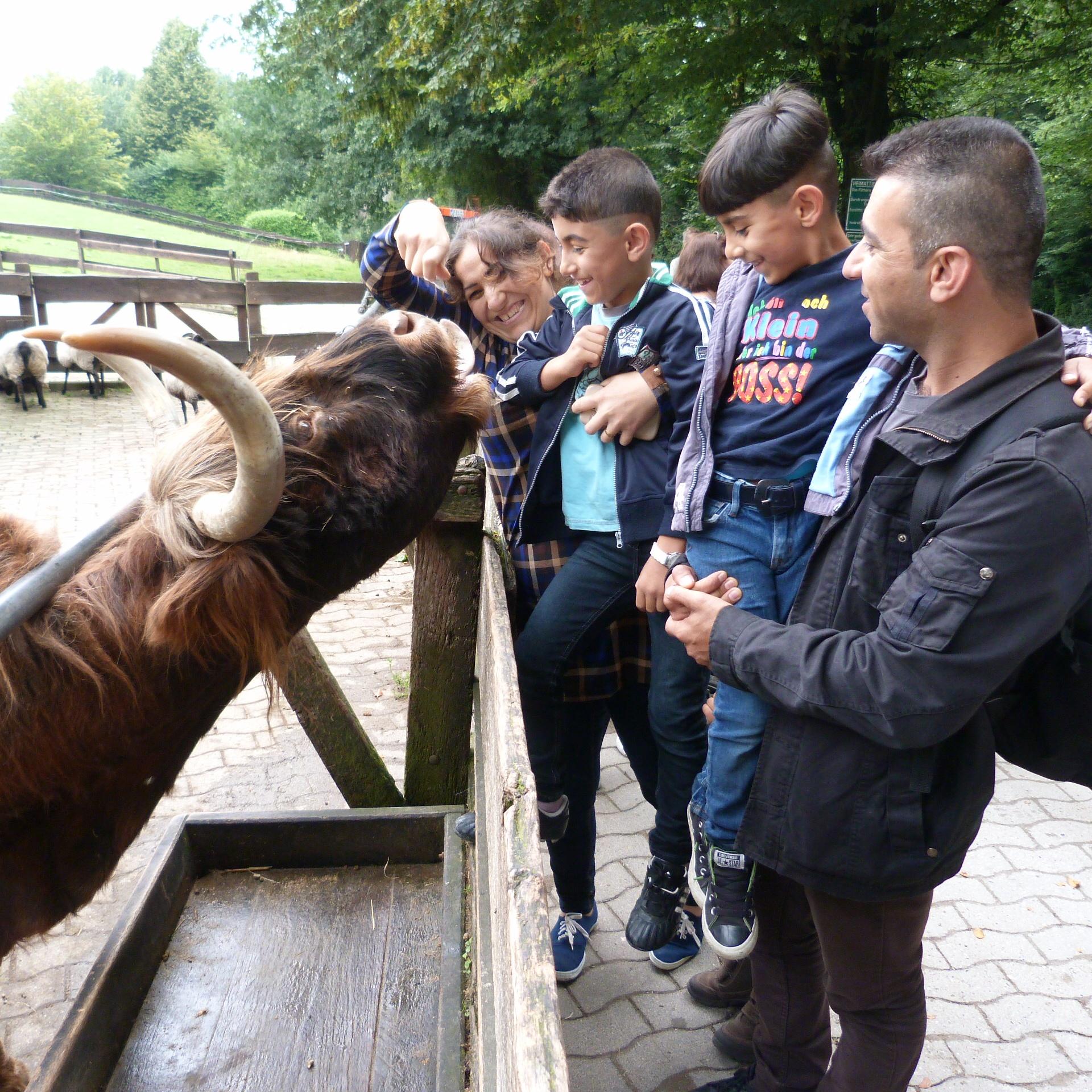Ein unbeschwerter Tag für Familien BESUCH Flüchtlinge im Tierpark Olderdissen