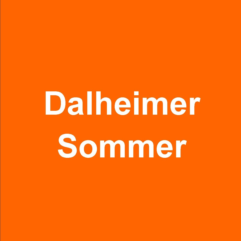 """Kulturfestival """"Dalheimer Sommer"""" gestartet Motto: """"Ein göttliches Geschenk. Klang und Wort seit Luther"""""""