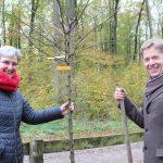 Pfarrerin Almuth Reihs-Vetter und Dieter Sauerbier setzen auf dem Waldfriedhof Altenböddeken mit dem Pflanzen eines Apfelbaumes ein Zeichen.