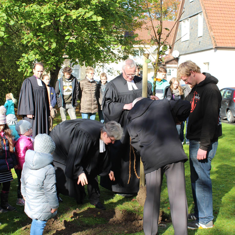 Pflanzaktionen der Kirchengemeinde Büren-Fürstenberg Apfelbaum-Aktion