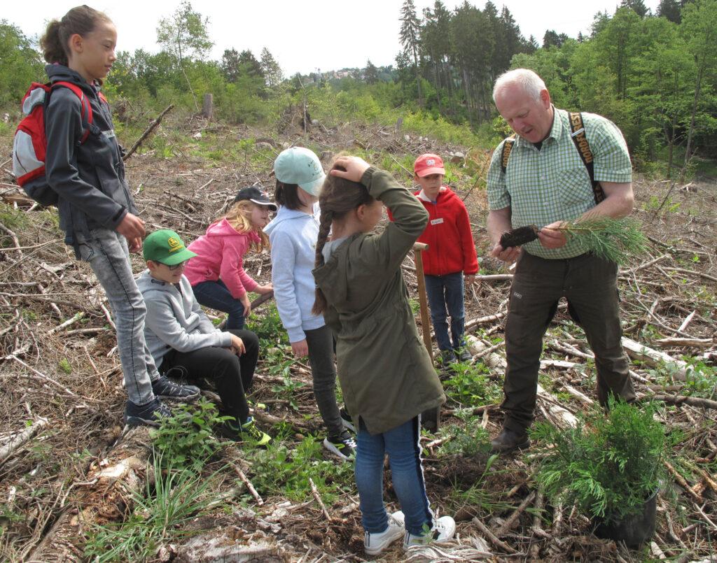 Pflanzaktion: Reimund Lesen vom Jugendwaldheim erklärt den Kindern, was sie beim Einpflanzen der Mammutbäumchen beachten müssen. Foto: Sonja Hillebrand