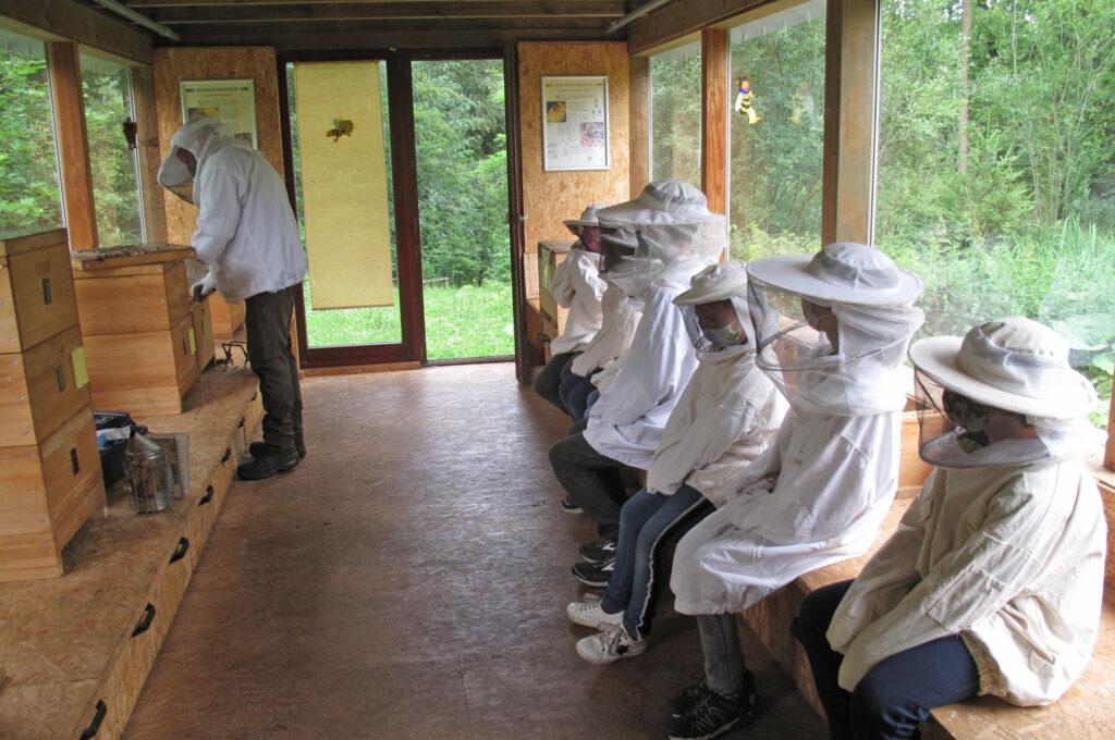 Nah dran: Die Kinder sitzen gespannt im Bienenhaus und warten auf das erste Bienenvolk. Foto: Sonja Hillebrand